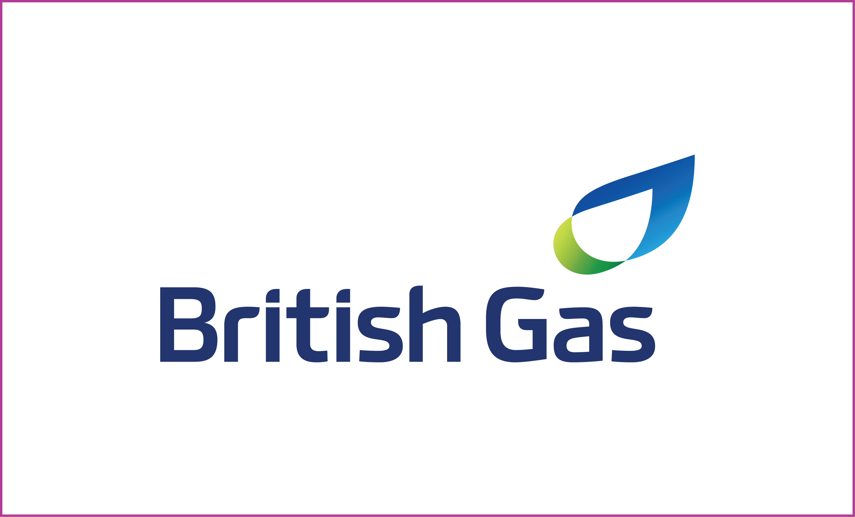 British Gas Replica Statement